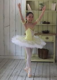 inf_book_tedukuri_ballet_costume2
